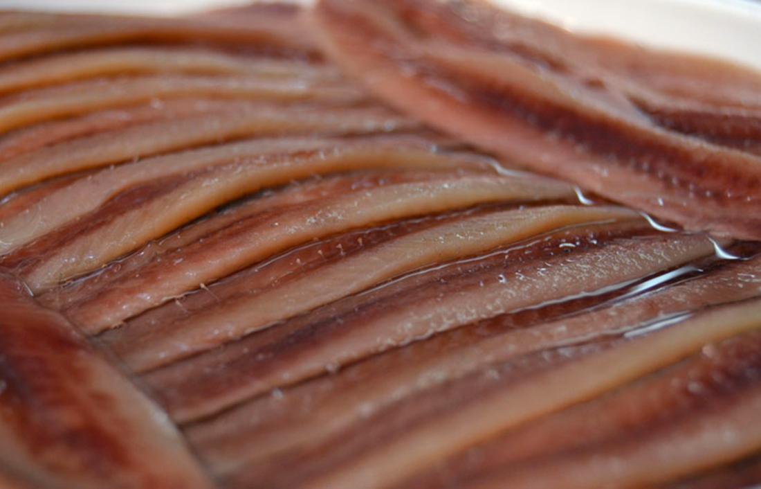 proveedor anchoas suau